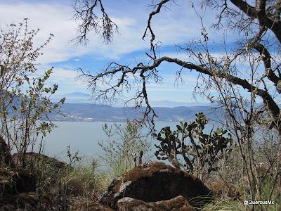 Lago de Chapala desde la Chupinaya