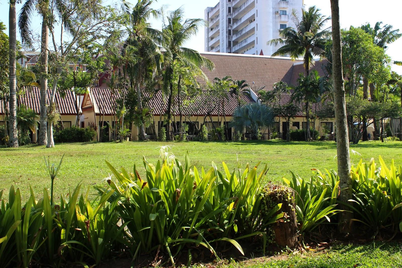 Every Little Thing has Magic : Deevana Patong Beach Resort, Phuket ...