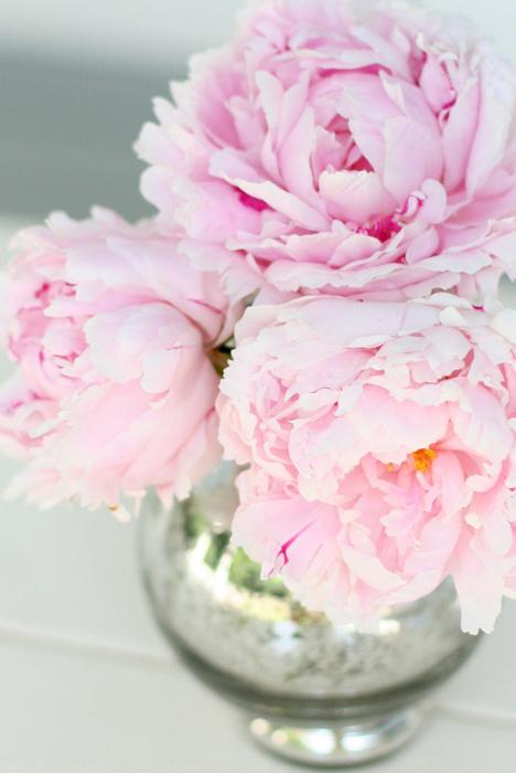 Заставки на айфон розовые 3