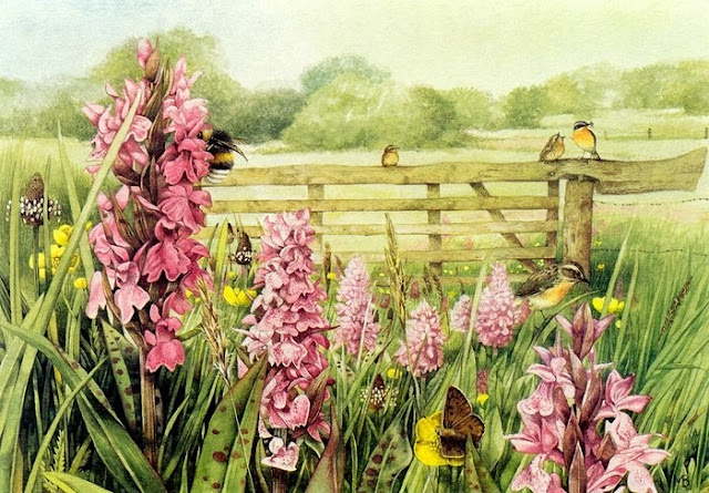 printemps francis carco