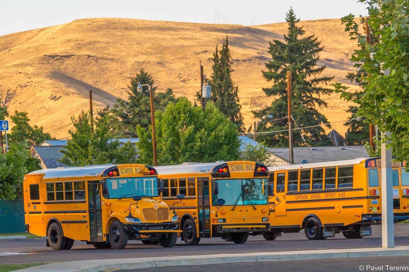 Школьные автобусы на стоянке перед конференц-центром.