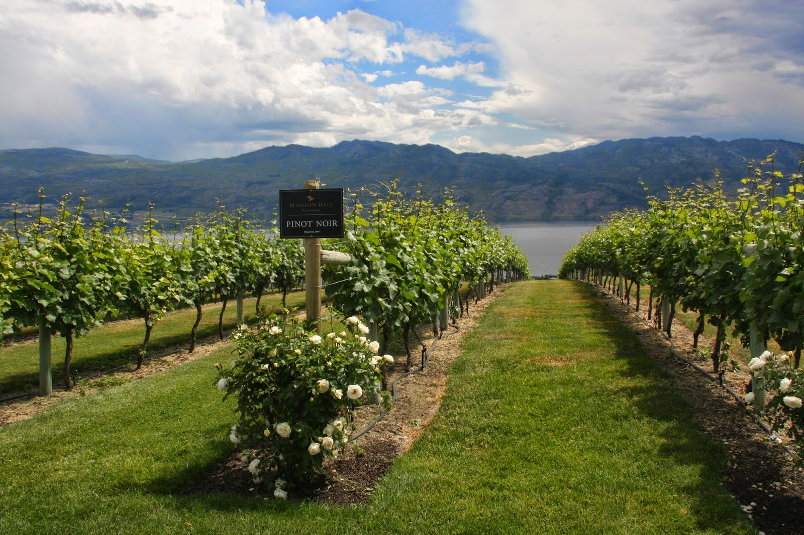 British Columbia Family Travel Vacation Okanagan Valley