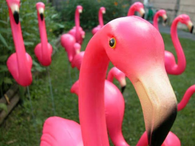 Pink flamingo lawn ornaments