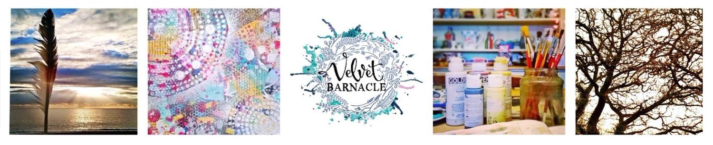 Velvet Barnacle