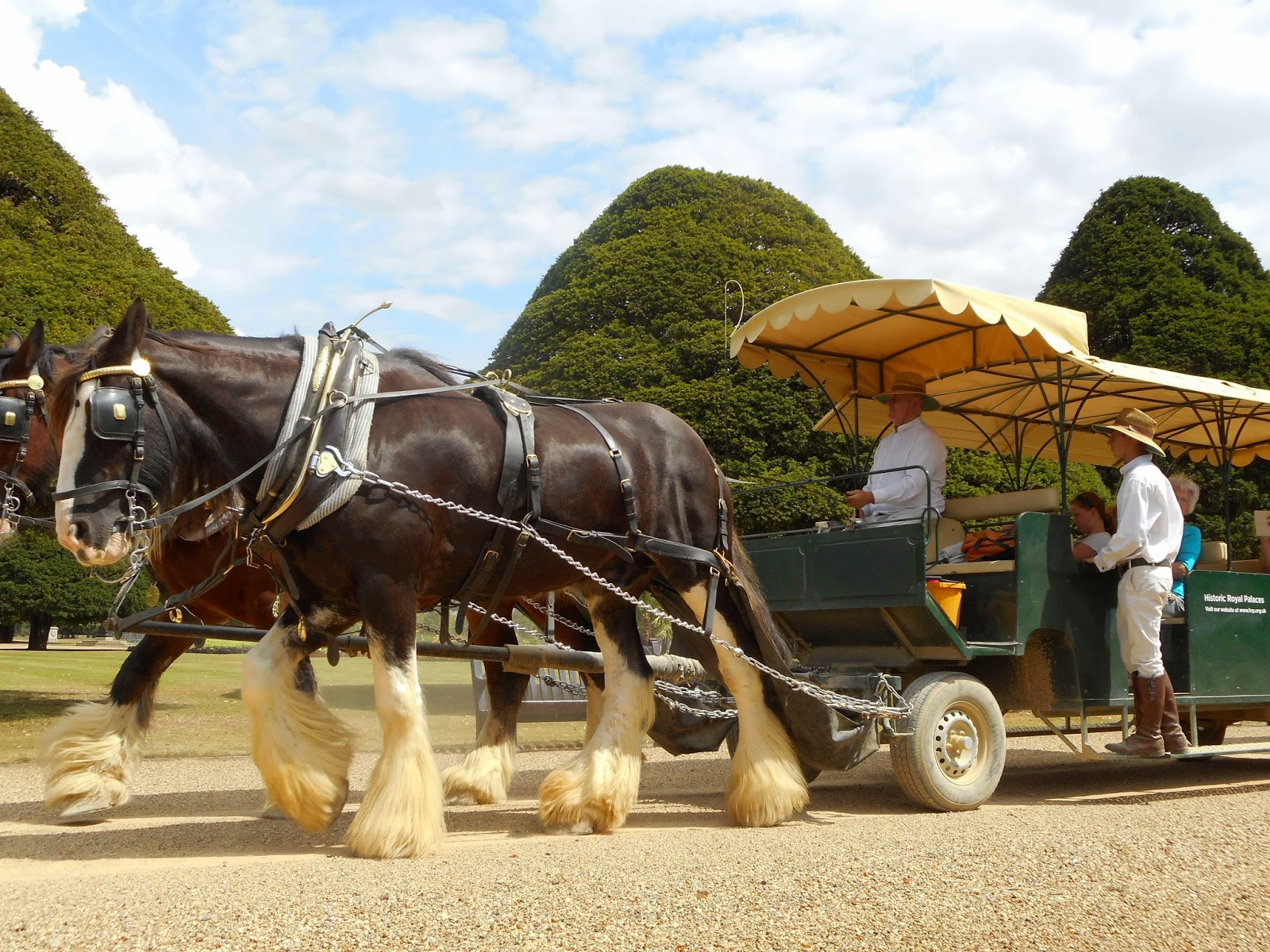 London buses one bus at a time: the return: Hampton Court Palace Gardens