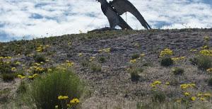 Piedra del Aguila podría tener nuevo acta de nacimiento.-