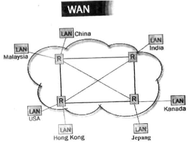Gambar 1-5: Wide Area Network