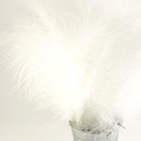 http://www.josyrose.com/p-Fluffy_Feather_Spray__Ivory-12622.aspx
