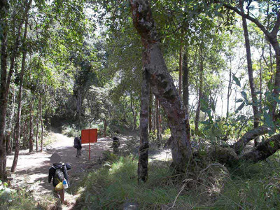 santri pecinta alam, hutan senaru,rinjani