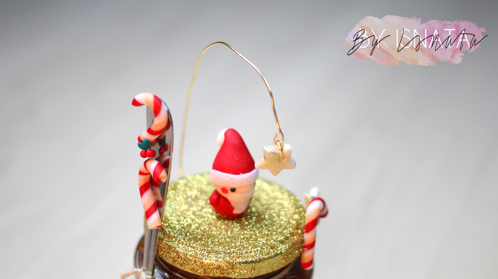 Diy petit budget cadeau de derni re minute customisez - Rose de noel en pot ...