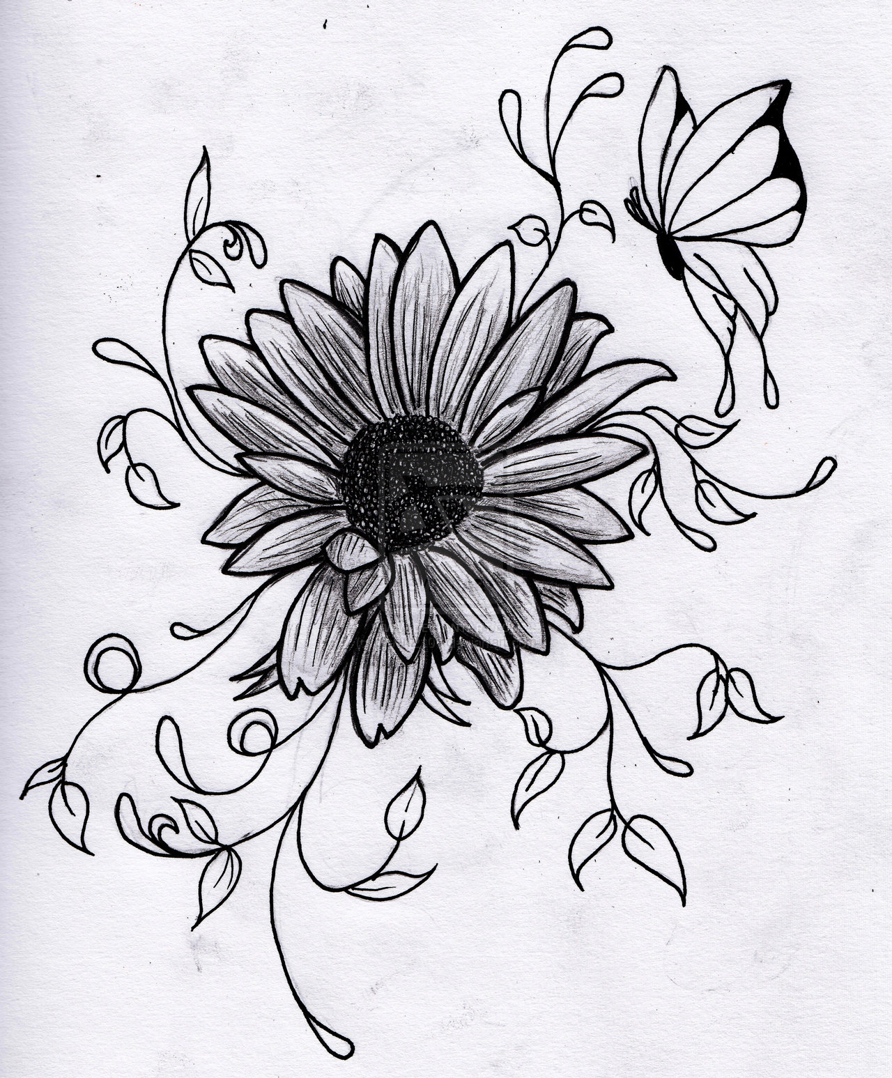 Drawing Scribble Flower : Flower pictures to draw beautiful flowers
