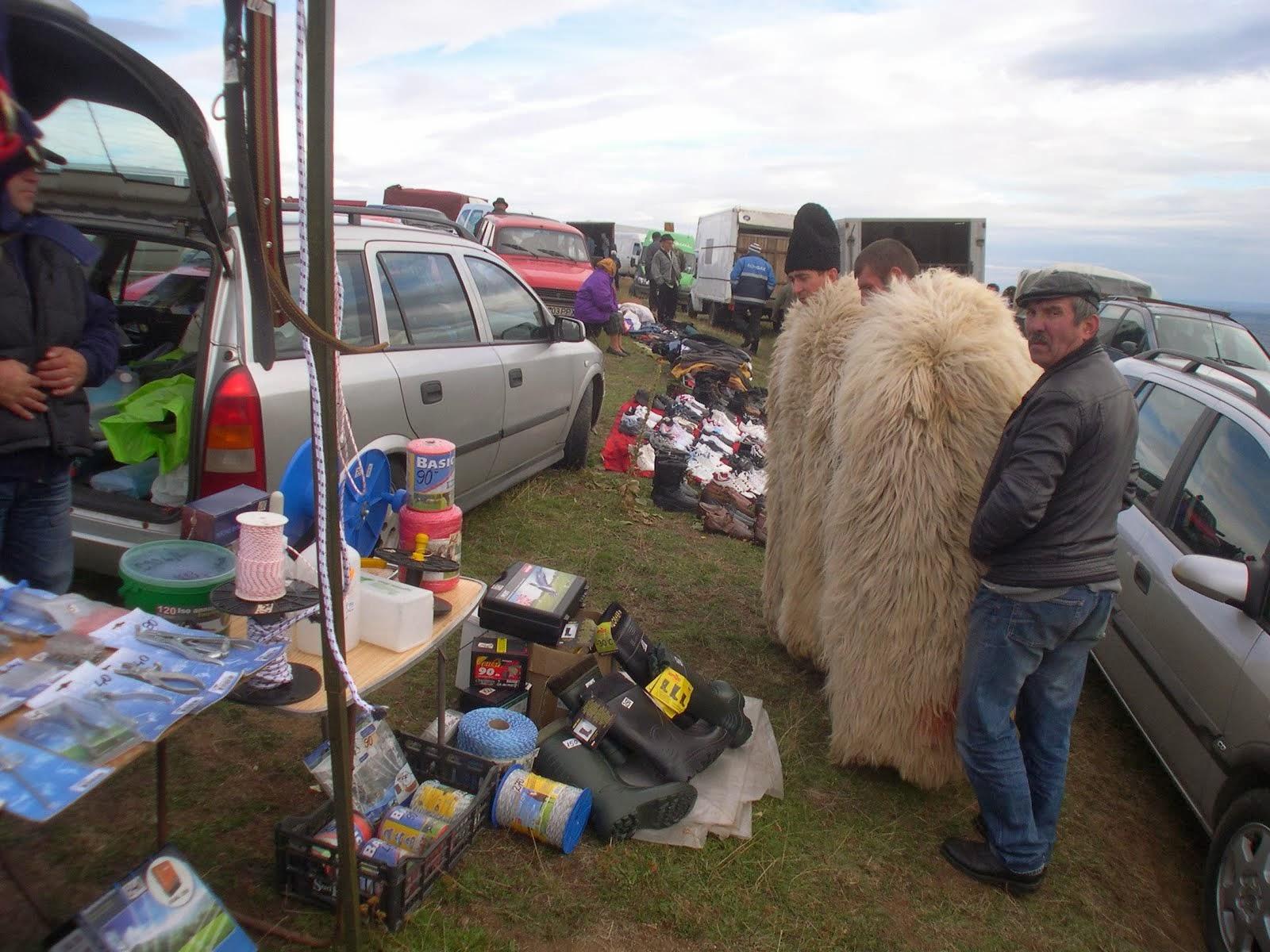 Animal fair 26