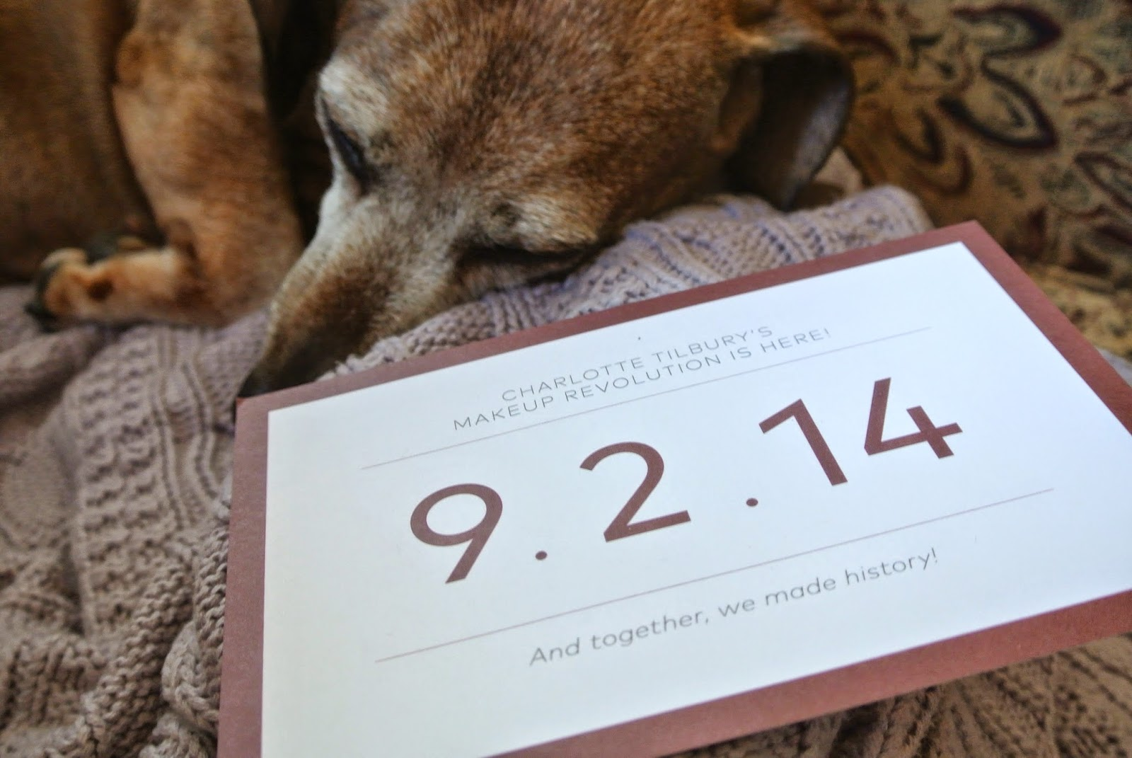 My dog with Charlotte Tilbury preview postcard.
