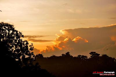Orange sky with sunrise