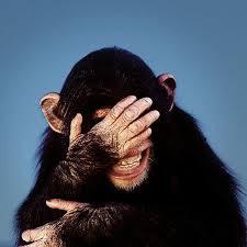 «Το γέλιο της μαϊμούς πέφτει στα Άνω Λιόσια και όχι μόνο!»