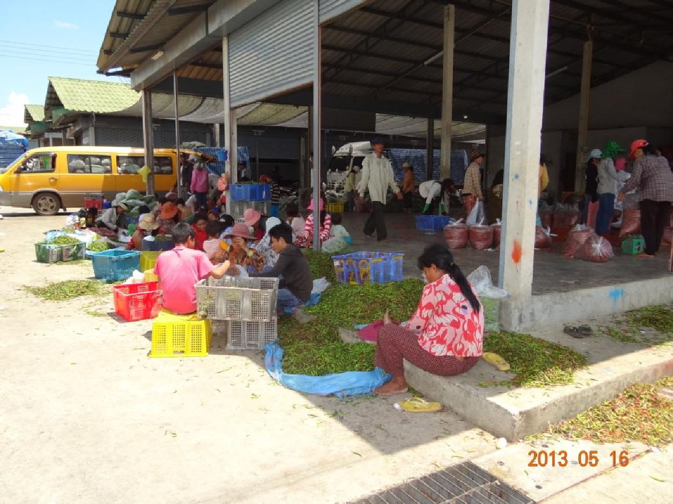 ... Thai side of the border, Khmer workers clean and process chili peppers