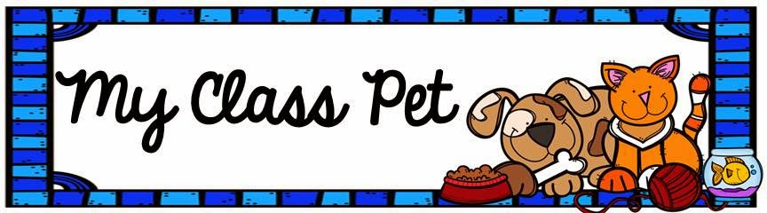 the busy busy hive teacher s pets rh thebusybusyhive blogspot com Pay Clip Art Running Race Clip Art
