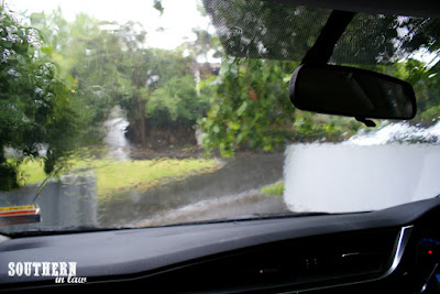 What to do on a Rainy Day in Auckland New Zealand