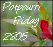 Potpourri Friday at 2805