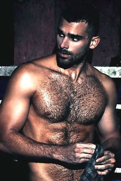 image of hairy muscle gay men
