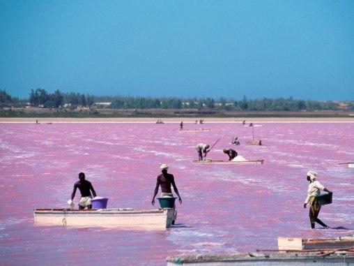 pink+lake+(3).jpg