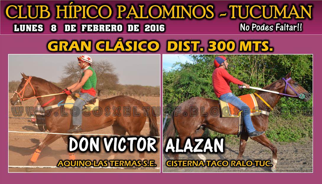08-02-16-HIP. PALOMINOS-CLAS-1