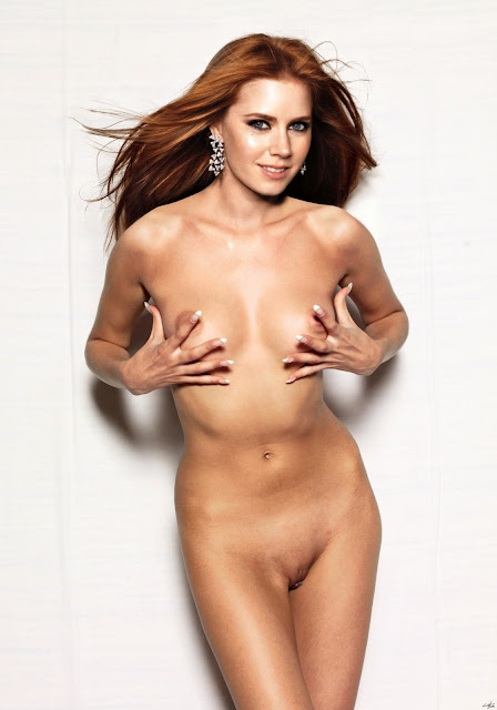 Amy Adams Fakes