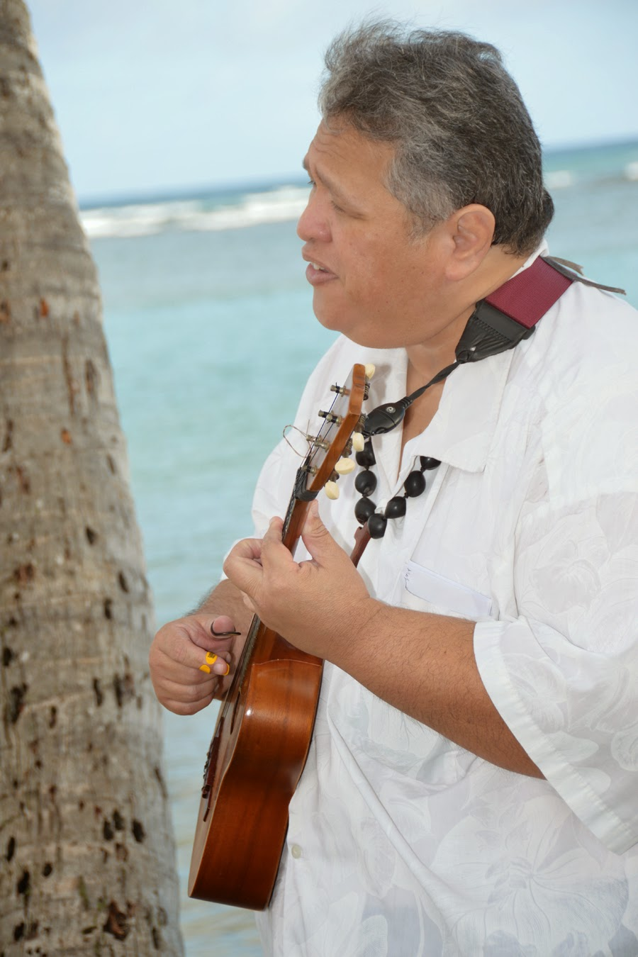 Hawaii Ukulele