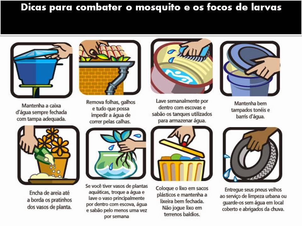 Dicas+para+combater+o+mosquito+e+os+foco
