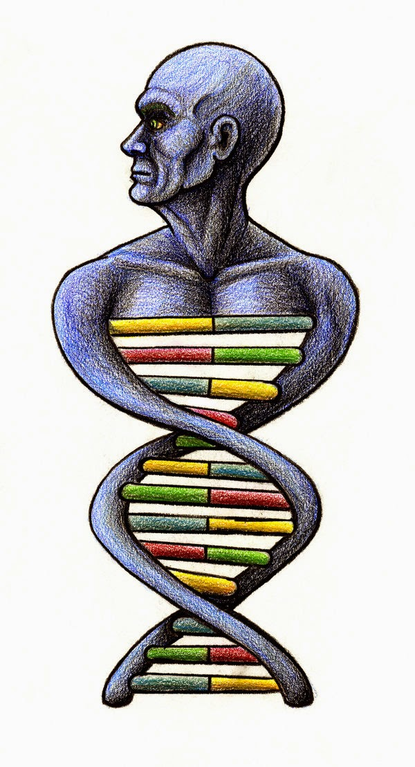 limitations of data obtained from human genome project The zebrafish reference genome sequence and its relationship to the human genome howe  on pre-publication data obtained via this website  the project data in.