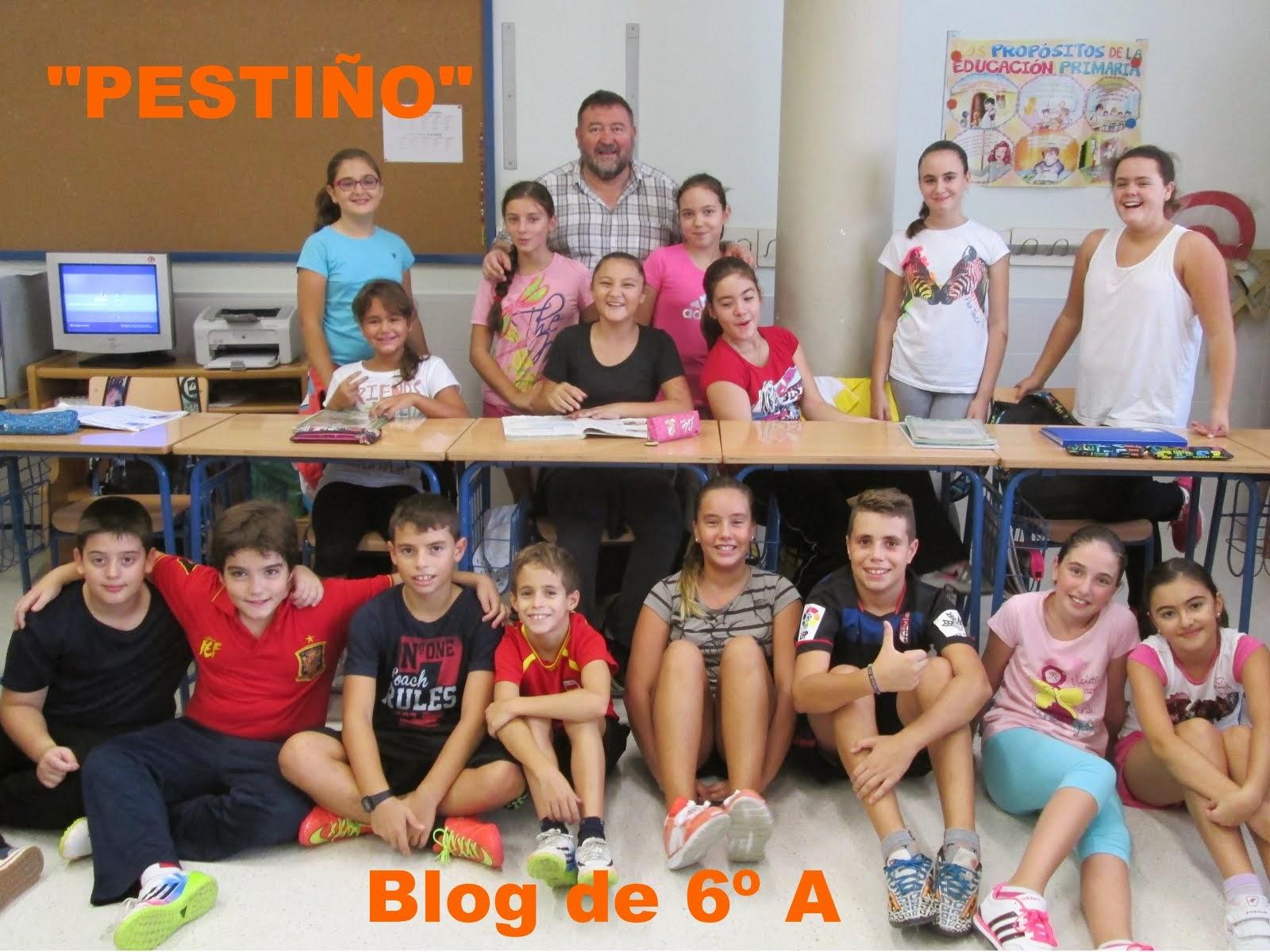 """""""PESTIÑO"""" blog de 6º"""
