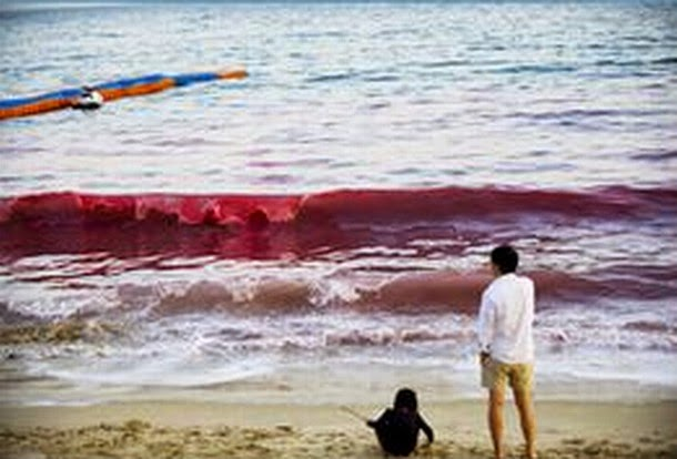 Mundo Sobrenatural Mar Rojo En Las Playas De China