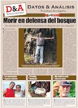 La Guerra por el Bosque estalló en el Pulmón del Planeta