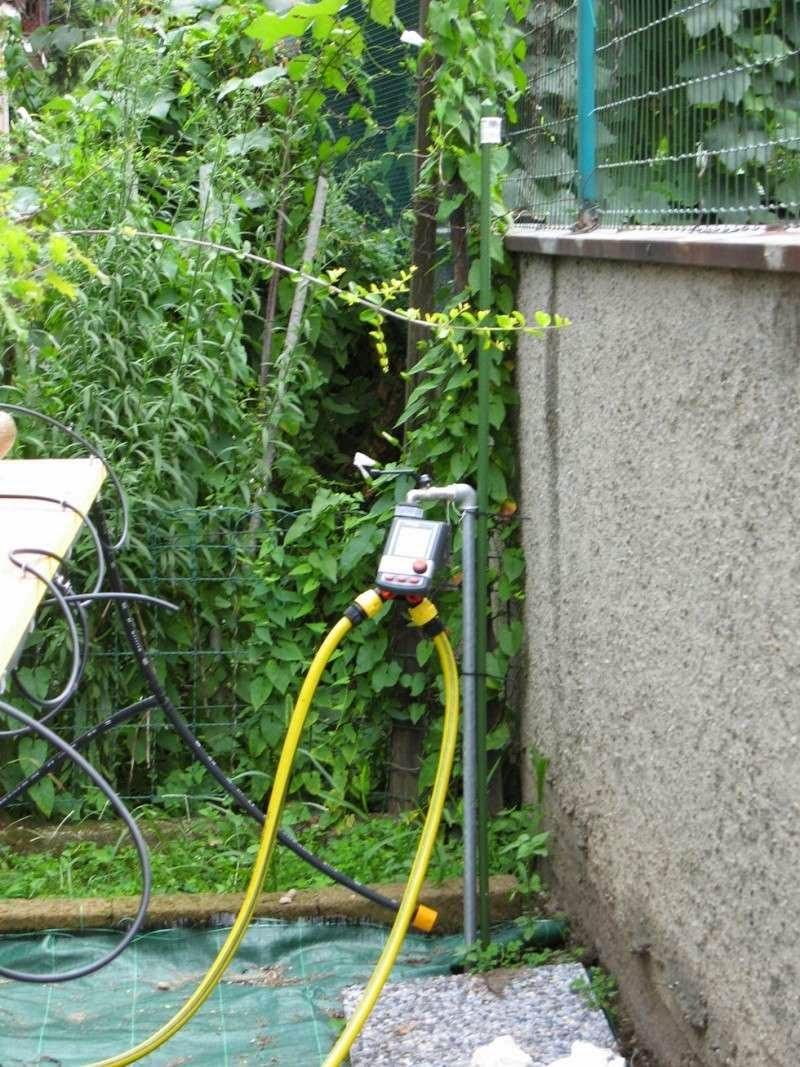 Evoluzione bonsai forum bonsai lodi simo irrigazione for Temporizzatore per irrigazione