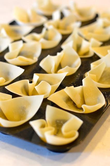 wonton-appetizer-recipes