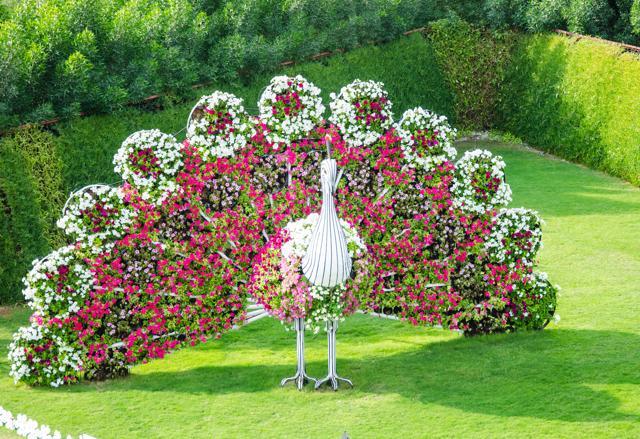 Collana exoterica cosmo fruttariano i giardini pi belli - Foto di giardini fioriti ...