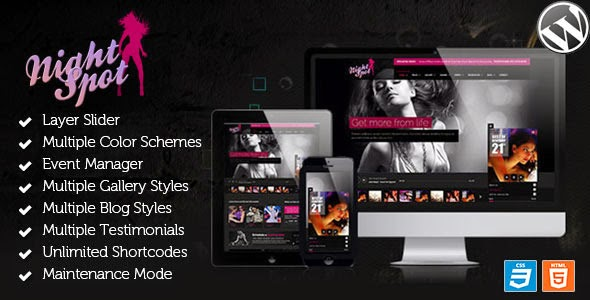 Premium Night Club Responsive WordPress Theme