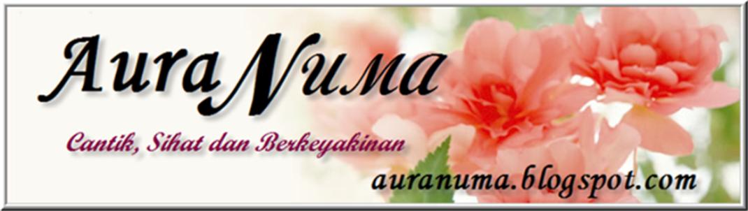 AuraNuma - auranuma.blogspot.com
