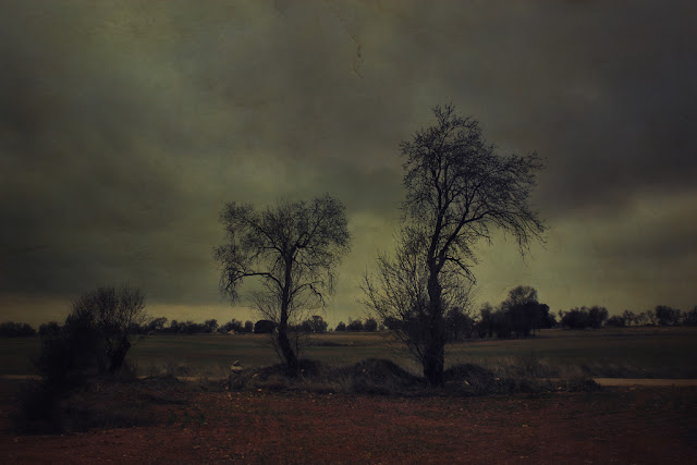 landscape art photo contemporary art Friedrich pictorialism