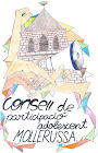 CONSELL ADOLESCENT