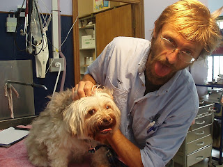 Dirk the vet nurse is checking Benji out.