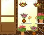 Solucion Flower Shop Escape Guia