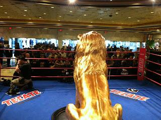 Pacquiao Marquez Las Vegas Grand Arrivals
