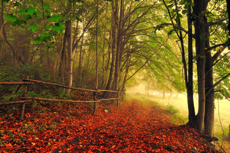 Paisajes Del Mundo Mas Hermosos - Los paisajes naturales más hermosos alrededor del mundo