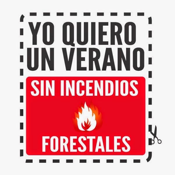 Prevengamos los Incendios