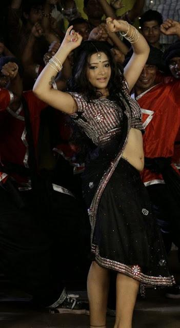Swetha Basu Spicy Hot Photo Gallery indianudesi.com