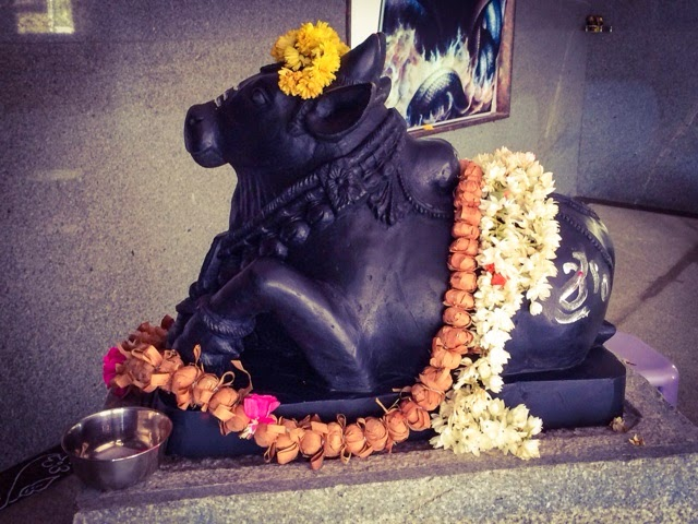 Nandi, Shiva's bull and vehicle