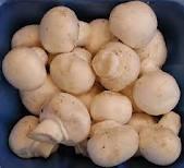 Ciupercile in alimentatia copilului