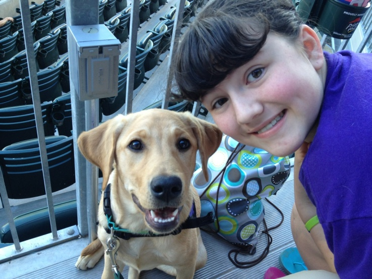 how to raise a service dog