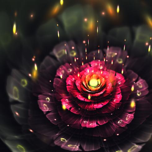 Descarga estas hermosas imágenes de flores de neón en tu pantalla trae mas de diez imágenes que puedes escoger son especialmente para celulares y tables .